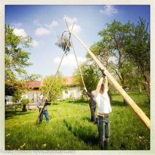 Familie Lepka stellte den Baum auf - nur Mama fährt ja Traktor.
