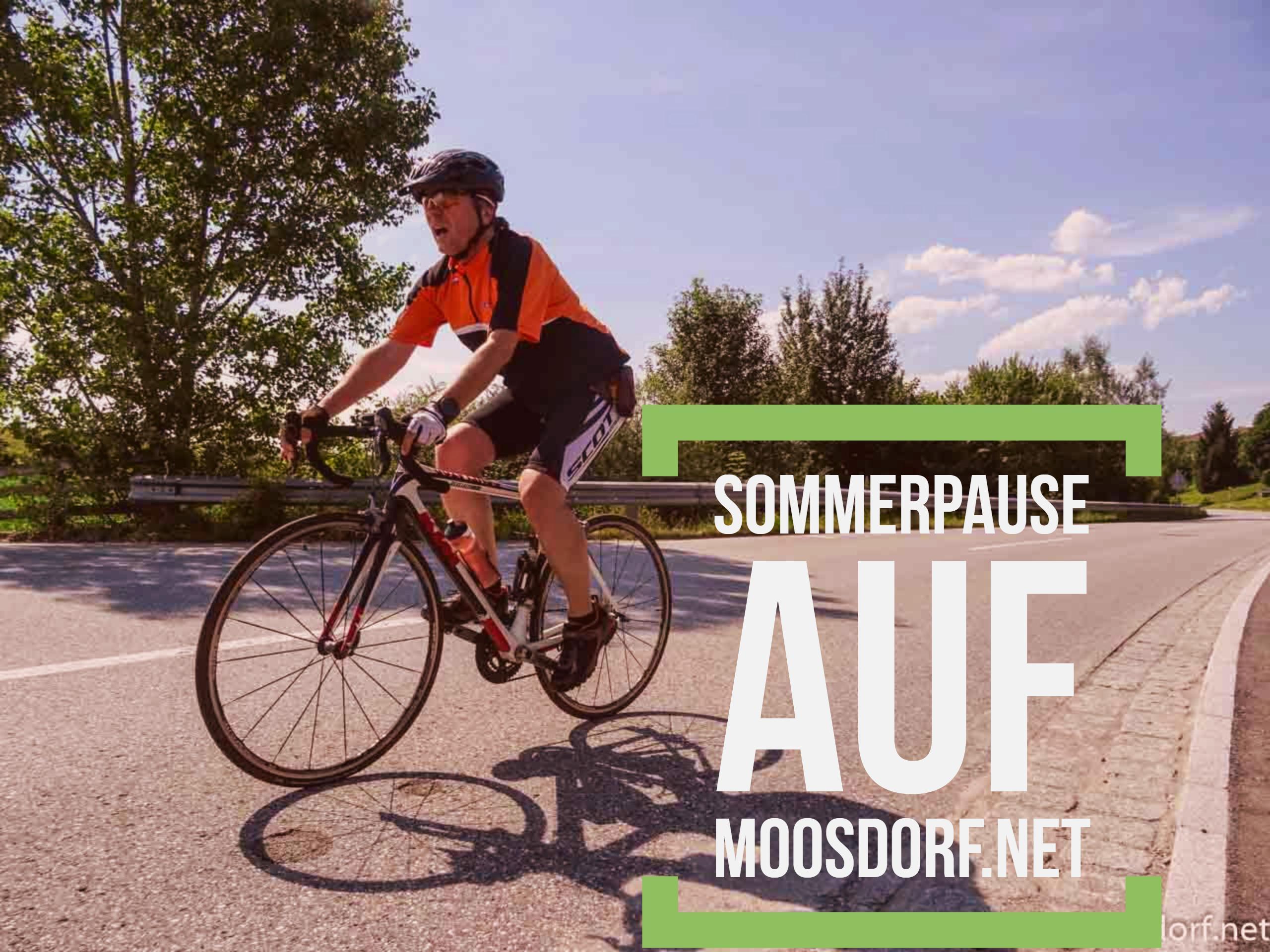 Sommerpause bei Moosdorf.net